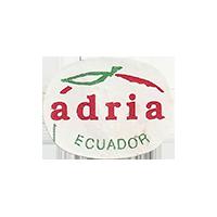 adria  23,9 x 18,4 mm paper before 2012 J Ecuador unique