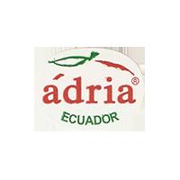 adria  23,7 x 17,8 mm paper before 2012 TL Ecuador unique