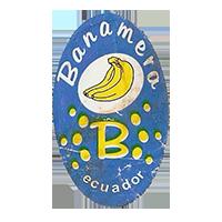 Banamera B  20,3 x 34,3 mm paper before 2012 M Ecuador unique