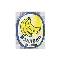 BANAORO  18,4 x 23,5 mm paper 2012 M Ecuador unique