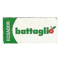 battaglio  34,7 x 16,1 mm paper 2013 NB Ecuador unique