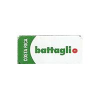 battaglio  37 x 16 mm paper 2015 J Costa Rica unique