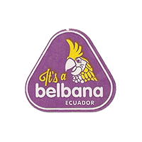 It's a belbana  25 x 22,9 mm paper 2012 M Ecuador unique