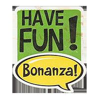 Bonanza! HAVE FUN!  28,8 x 34,4 mm plastic 2011 J unique