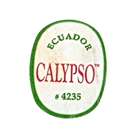 CALYPSO #4235  22,1 x 28,3 mm paper before 2012 Ecuador unique