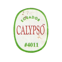 CALYPSO #4011  22,1 x 28,3 mm paper before 2012  Ecuador unique