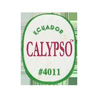 CALYPSO #4011  22,1 x 28,3 mm paper 2012 DK Ecuador unique