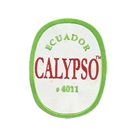CALYPSO #4011  22,1 x 28,3 mm paper before 2012 NB Ecuador unique