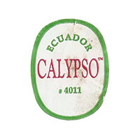 CALYPSO #4011  22 x 28,1 mm paper before 2012 J Ecuador unique