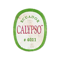 CALYPSO #4011  22,1 x 28 mm paper 2012 M Ecuador unique