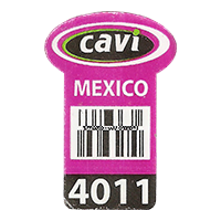 cavi 4011  25,7 x 38,7 mm paper 2017 ML Mexico unique