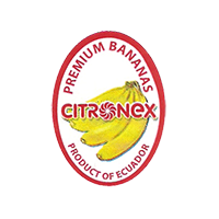 CITRONEX PREMIUM BANANAS  20,3 x 27,7 mm paper before 2012 TL Ecuador unique