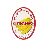 CITRONEX PREMIUM BANANAS  20,3 x 27,1 mm paper before 2012 J Ecuador unique