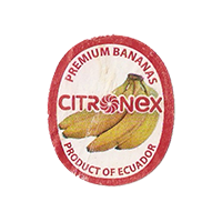 CITRONEX PREMIUM BANANAS  22,1 x 26,6 mm paper 2013 Ecuador unique