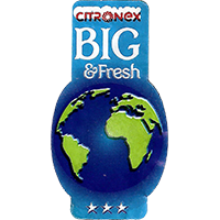 CITRONEX BIG & Fresh  25,3 x 44,2 mm paper 2015 KT unique