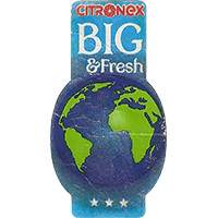 CITRONEX BIG & Fresh  0 x 0 mm paper 2017  Ecuador unique