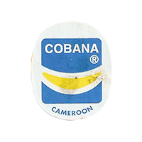 COBANA  22,4 x 27 mm paper before 2012 Cameroon unique