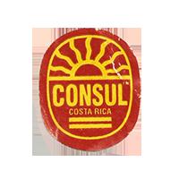 CONSUL  C  22,3 x 26,8 mm paper 2012 DK Costa Rica unique