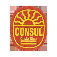 CONSUL  21,9 x 26,8 mm paper 2014 M Costa Rica unique