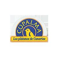 CUPALMA Los platanos de Canarias  25,5 x 18,2 mm plastic 2012 M Spain unique
