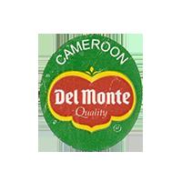 Del Monte Quality  22 x 25,2 mm paper before 2012 Cameroon unique