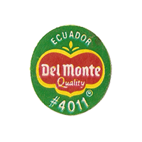 Del Monte Quality #4011  22,3 x 25,1 mm paper before 2012 NB Ecuador unique