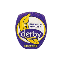 derby  PREMIUM QUALITY  20 x 23,4 mm paper before 2012 J Ecuador unique
