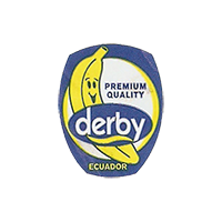 derby  PREMIUM QUALITY  18,4 x 23,3 mm paper before 2012 J Ecuador unique