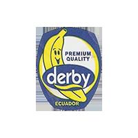 derby  PREMIUM QUALITY  18,4 x 23,3 mm paper before 2012 J Ecuador unique
