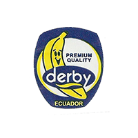 derby  PREMIUM QUALITY  20 x 23,3 mm paper 2012 J Ecuador unique
