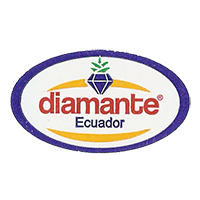 diamante  35 x 20 mm plastic before 2012 J Ecuador unique