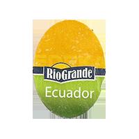 EDEKA RioGrande  20,4 x 27,4 mm paper 2011 NB Ecuador unique