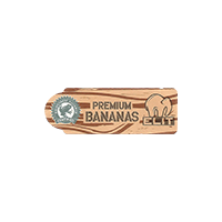 ELIT PREMIUM BANANAS RAINFOREST ALLIANCE CERTIFIED  42,6 x 14,9 mm paper 2015 NB unique