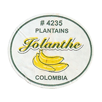 Jolanthe #4235 PLANTAINS  32,7 x 28,9 mm paper 2012 M Colombia unique