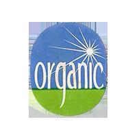 organic  22,1 x 26,9 mm paper before 2012 NB unique