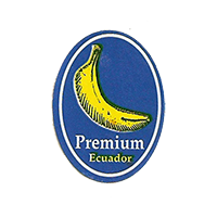 Premium  20,3 x 27,4 mm paper before 2012 NB Ecuador unique