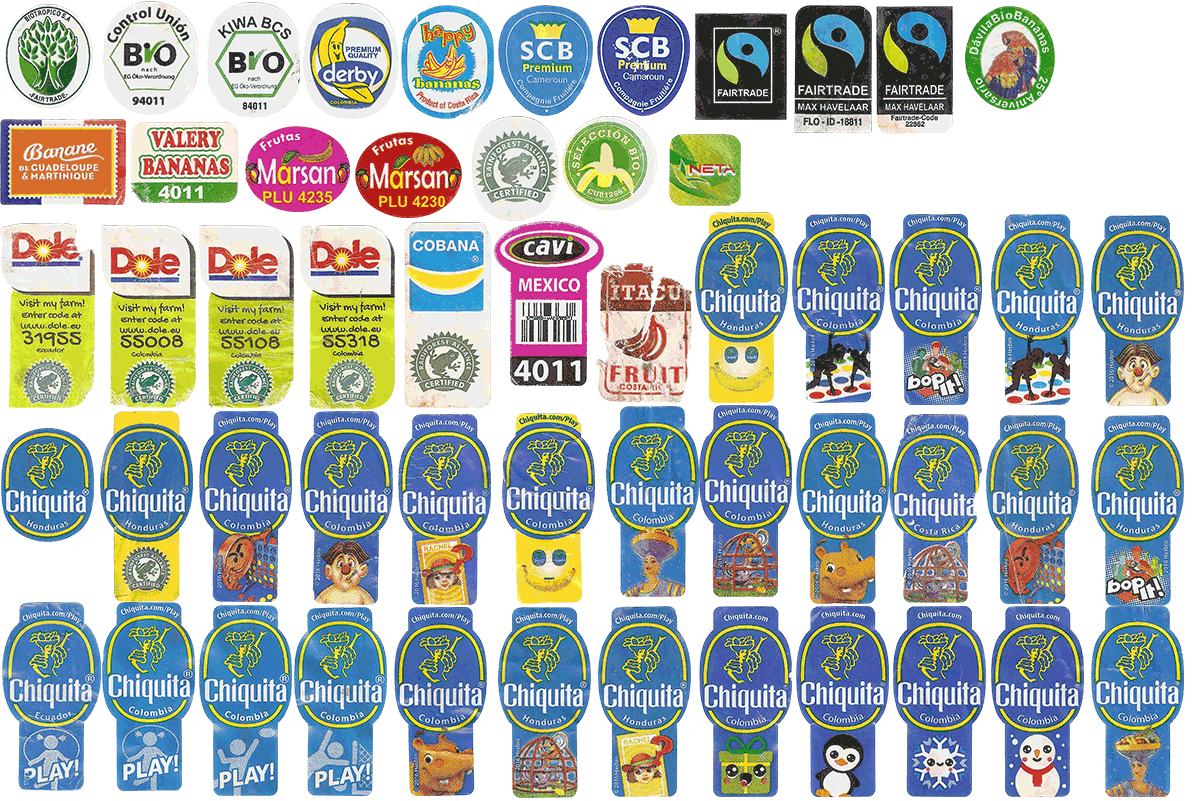 chiquita and the rainforest alliance case 2005/2/23 one of the world's foremost marketers of fresh produce, chiquita brands international, inc, is a food company whose name will forever be linked with the chiquita banana, the number one banana brand in the european union and number two in north america (behind.